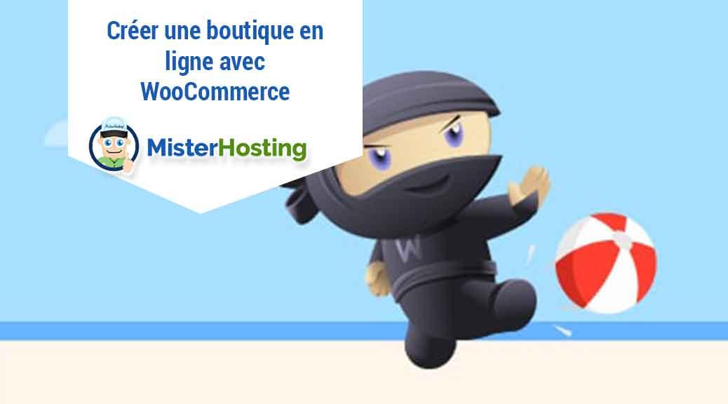H bergement site web nom de domaine misterhosting for Idee de commerce en ligne
